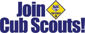 join-scouts-header